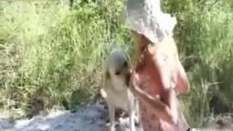 Animal sex извращенка перепихнулась с псиной на лугу зоофилия видеофильм